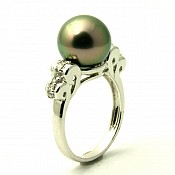 Paris <br/> 18K Tahitian Black Pearl Ring