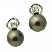 1409 - Diamond <br/> 18K Tahitian Black Pearl Earrings Studs