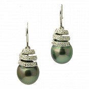 Haley 18K Tahitian Black Pearl Earrings